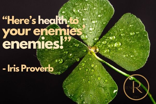 """Here's health to your enemies' enemies!"" - Iris Proverb"